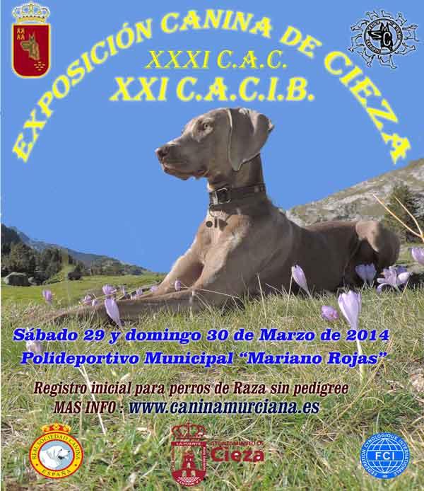 Exposición Canina de Cieza (Murcia) 2014
