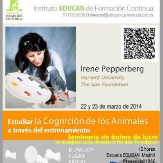 Irene Pepperberg: la futura ciencia del comportamiento animal, en un imprescindible seminario presencial y on-line.