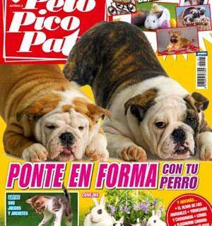 Revista Pelo Pico Pata: Chihuahua Vs Yorkshire, Primaveram calor y perros, Ejercicio con tu perro, Construir el vínculo con tu perro, Flashmob canino, Perros superdotados...