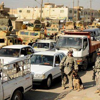#Perros detectores de explosivos: no se equivocan con otros materiales.