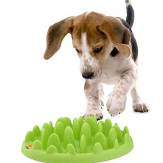 Comedero Green, perfecto para #perros glotones, y también como ayuda para su estimulación mental (puede prevenir la torsión gástrica). C/ Vídeo.