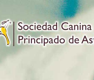 XXXVIII Exposición Nacional del Principado de Asturias 2014 y XXVII Exposición Internacional del Principado de Asturias 2014.