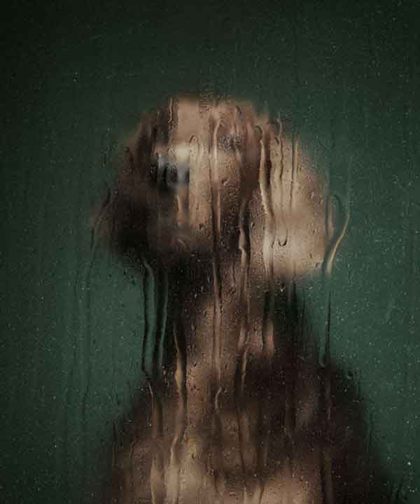 Martin Usborne, el fotógrafo de los los animales sin voz...