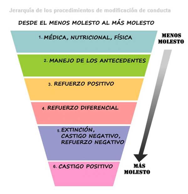 Una Jerarquía de los procedimientos de modificación de conducta, de Susan Friedman.