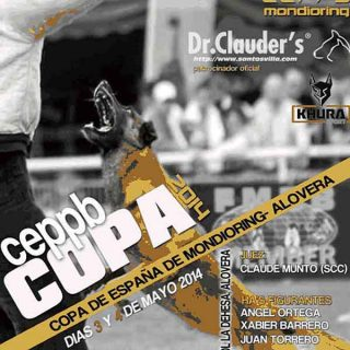 Copa de España de Mondioring Alovera, próximo fin de semana en Guadalajara.
