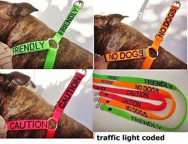 Arneses para perros que identifican comportamientos
