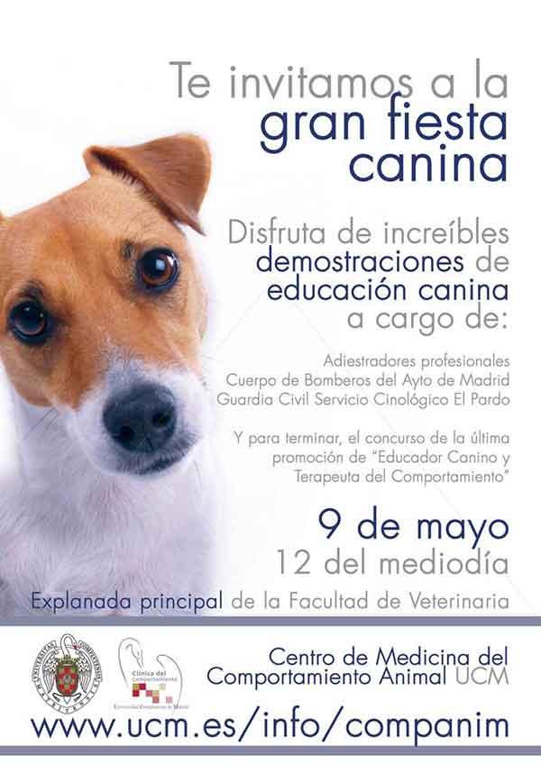 En la Fiesta Canina de la UCM (la entrada es gratuita) habrá demostraciones de adiestramiento con: Guardia Civil Servicio Cinológico El Pardo, Cuerpo de Bomberos del Ayto de Madrid y Adiestradores profesionales.