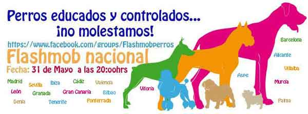 Flashmob Perros Educados ¡Ya queda muy poco!