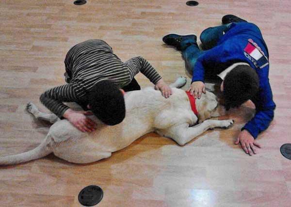 En la foto Guinness trabajando en una sesion el día 8 de abril con niños con Asperger.