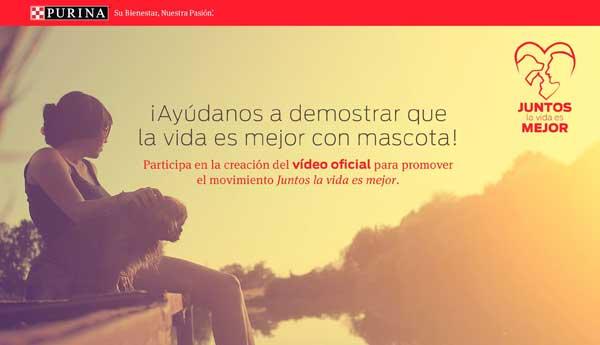 Concurso de vídeos perrunos: 'Juntos, la vida es mejor'.