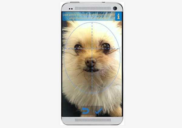 App de reconocimiento facial perruno