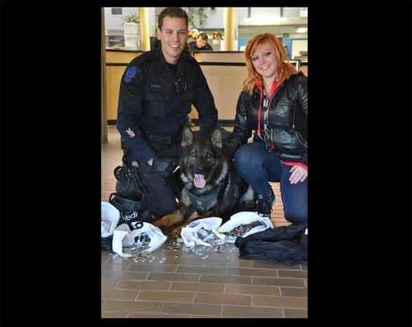 """Matar un perro policía... ¿Cuánto """"cuesta""""?"""