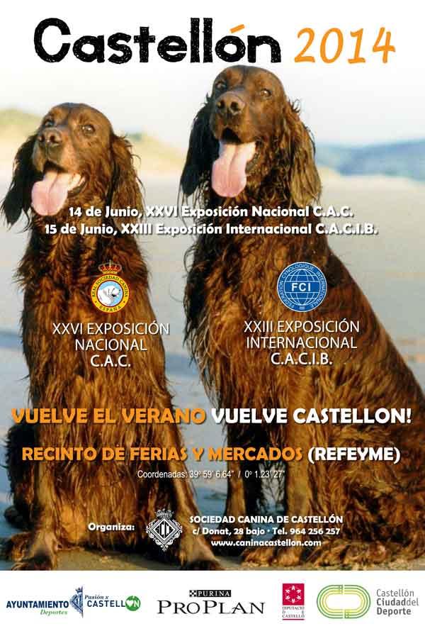 Exposición Internacional Canina Castellón 2014.