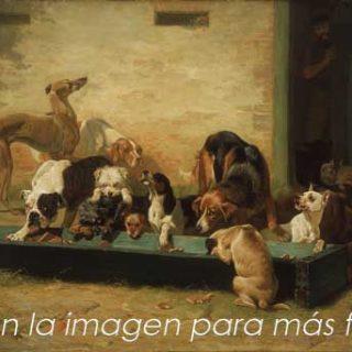 Más frases sobre perros.