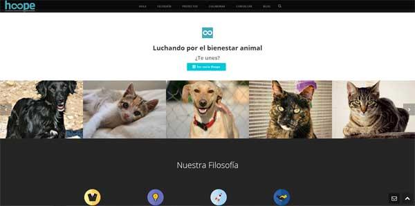 Urgencia en el Centro de Protección Animal de Torrejón de Ardoz