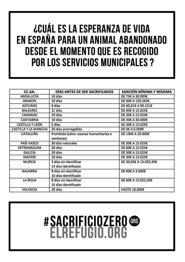 #SacrificioZero. La protectora El Refugio recogerá 50.000 firmas para evitar que se sacrifiquen perros y gatos abandonados en la Comunidad de Madrid.