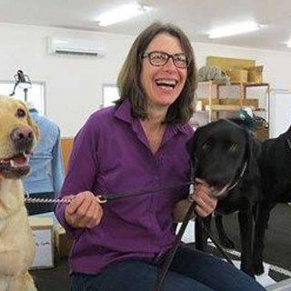 Ficha de evaluación funcional en perros (artículo de Susan Friedman).