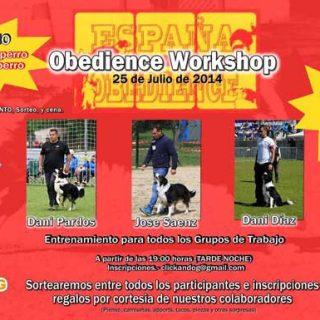 """Obedience WorkShop... ¿Quieres conocer la Obediencia (OCI) desde """"dentro"""" y colaborar con el equipo español en el próximo Mundial?"""