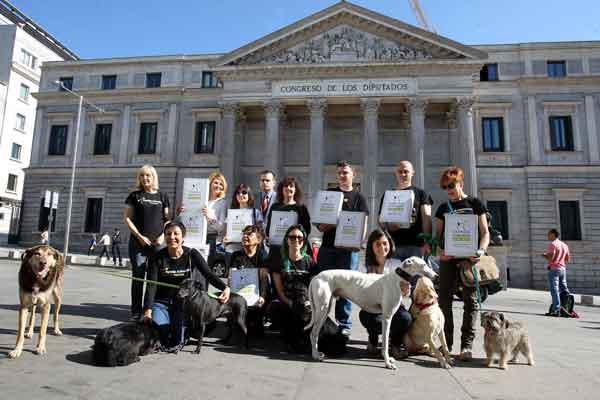 ¿Quedará el Anteproyecto de Ley de Comercio y Tenencia de Animales en papel mojado?
