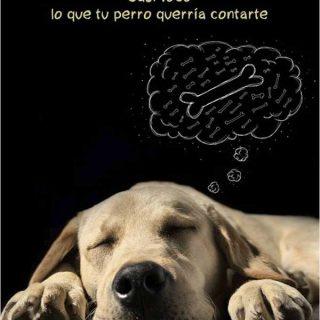 """""""Es posible incrementar la inteligencia de tu perro. Aunque te pueda resultar difícil de creer, se puede cambiar la fisiología del cerebro de tu perro. Puedes hacer que sea más grande y eficiente simplemente proporcionando ciertas experiencias a tu mascota"""". Stanley Coren, en su último libro """"¿Sueñan los perros? Casi todo lo que tu perro querría contarte""""."""