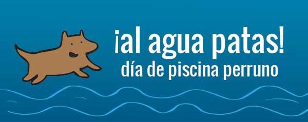 Piscina para perros en Daganzo (Madrid). ¡Al agua patas! Evento acuático para perros y personas...