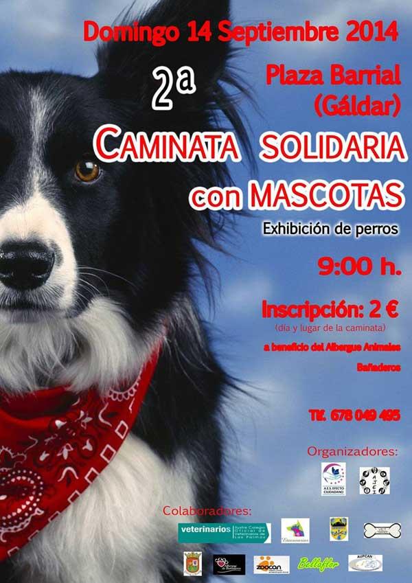 """El próximo domingo día 14 de septiembre, se celebrará la """"2ª caminata solidaria con mascotas"""" en Barrial."""