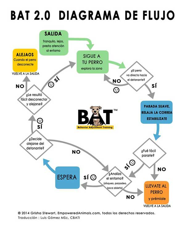 BAT 2.0 ¿Es útil en la vida real?