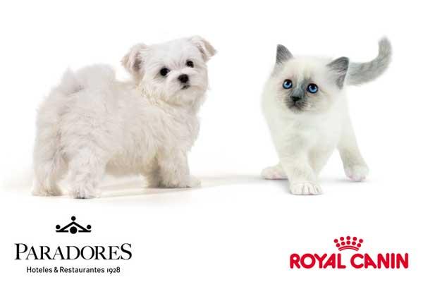 12 Paradores ya admiten perros y gatos. Royal Canin y Paradores dan la bienvenida a las mascotas.