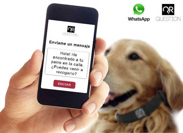 Códigos QR y perros perdidos.
