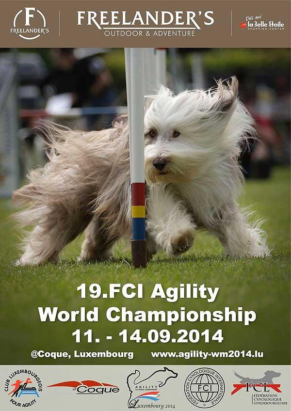 Campeonato del mundo de agility de la FCI.