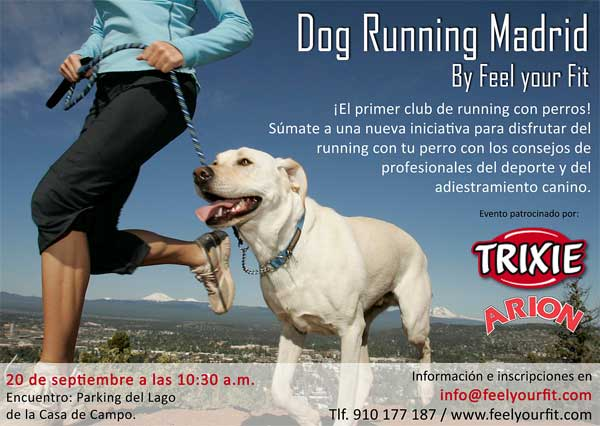 Dog Running Madrid, todo preparado.