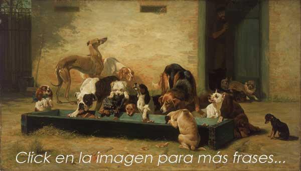 Más frases de perros.
