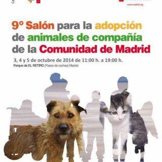 Salón de la Adopción de Madrid 2014.