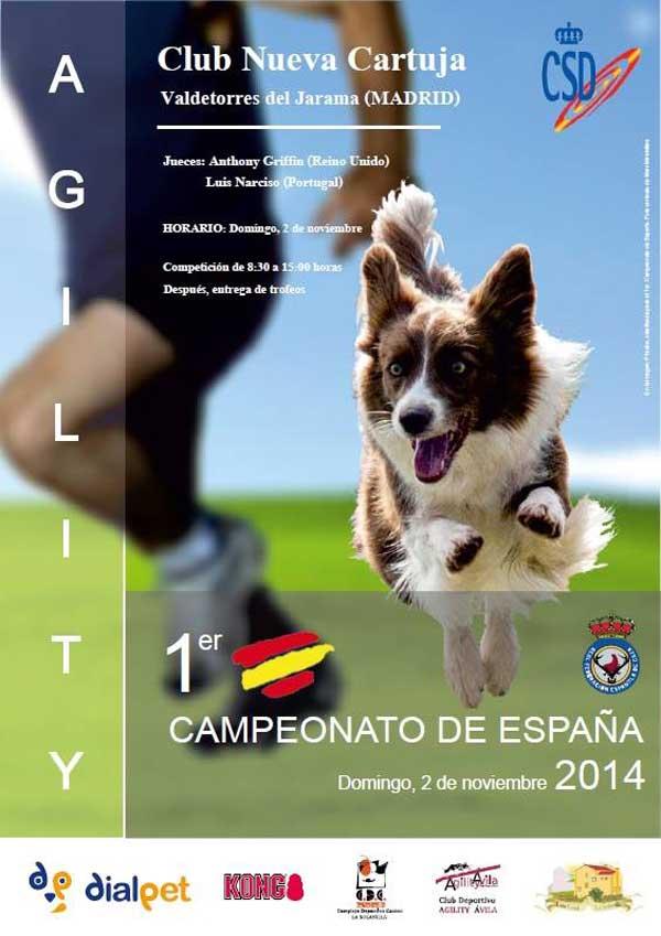 Primer Campeonato de España de Agility de la RFEC, próximo fin de semana en Valdetorres del Jarama.
