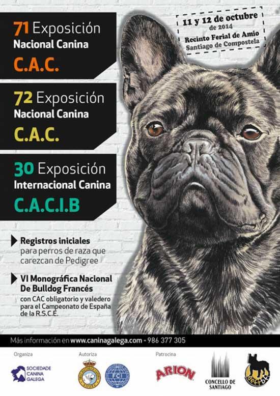 Exposiciones Caninas (Nacional e Internacional) en Santiago de Compostela, programa, info...