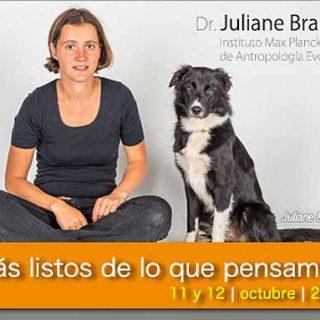 Juliane Braüer, 11 y 12 de octubre en Madrid. Más listos de lo que pensamos, un seminario imprescindible.