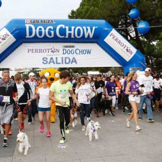 Coincidiendo con la carrera Perrotón, Purina Dog Chow aprovecha para concienciar sobre los beneficios que aporta la realización de actividad física tanto para las mascotas como para sus propietarios y demostrar que juntos la vida es mejor.