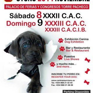 Exposición Canina de Otoño Murcia 2014, próximo fin de semana en Torre Pacheco.