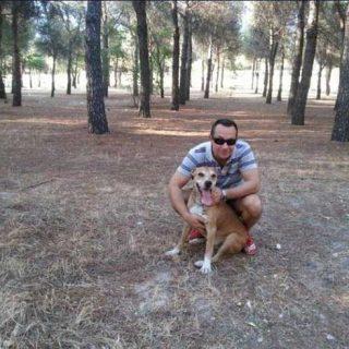 El Tribunal Superior de Justicia de Madrid incoa diligencias previas contra el consejero de sanidad, don Francisco Javier Rodríguez Rodríguez