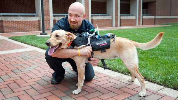 """Arnés tecnológico para """"hablar"""" con los perros"""