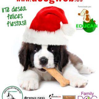 ¡Desde @doogweb te deseamos Feliz #Navidad!