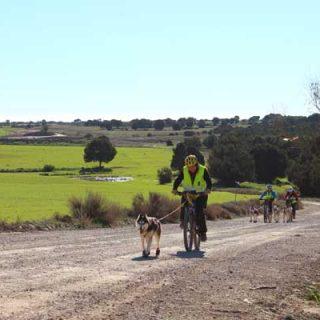 @Mushingmonegros Travesía de Los Monegros 2014: 155 kilómetros en menos de 24 horas.