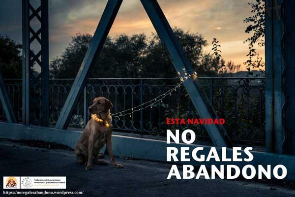La Federación de Asociaciones de Protección Animal de la CAM pide no regalar animales por Navidad y evitar así su posterior abandono, y la adopción como alternativa a la compra de animales.