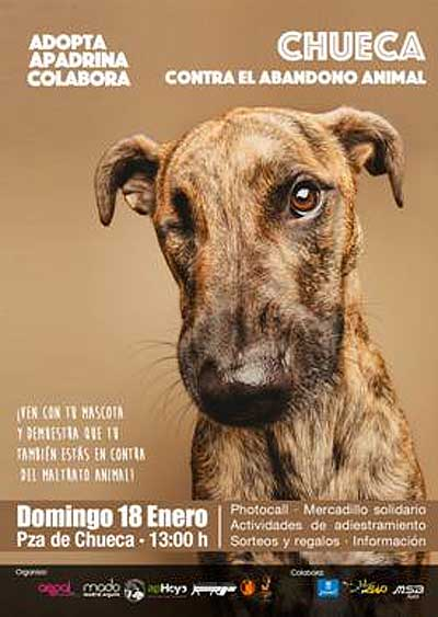Chueca Loves San Antón. Adopta, apadrina, colabora. Chueca contra el maltrato animal.