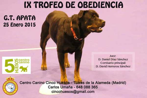 IX Trofeo de Obediencia del G. T. APATA.