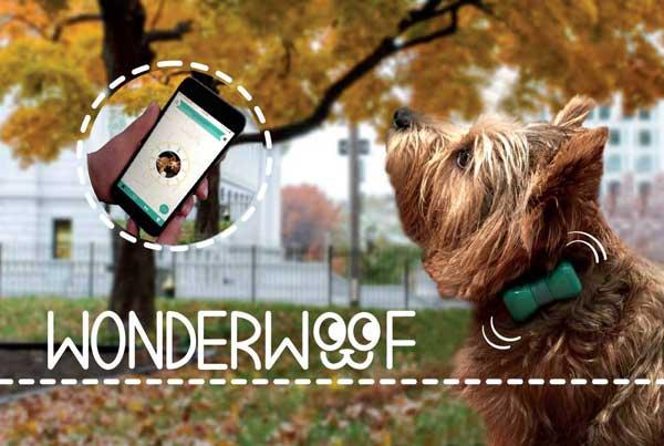 Gadget y app WonderWoof.