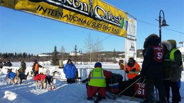 @theyukonquest La carrera de mushing Yukon Quest 2015, puede seguirse en vivo desde su página.