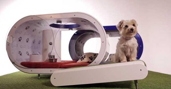 """Dream Doghouse es una """"Casa de lujo"""" para perros... que cuesta 27.000 euros."""