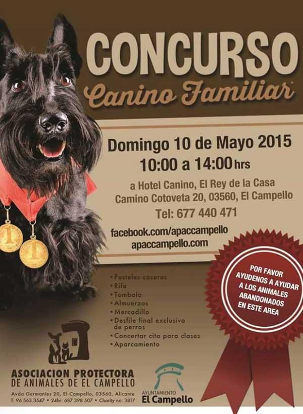 Concurso Canino en Campello, para promover la adopción de perros en la zona.