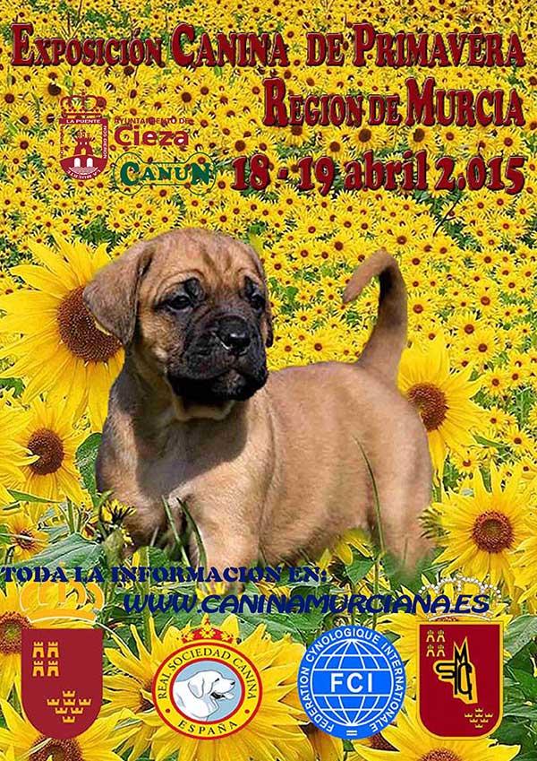 El próximo fin de semana, se celebrará la Exposición Canina de Primavera Región de Murcia, en Cieza.
